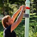 Tying red ribbons on the El Camino Real bells, marking the Trail of Tears